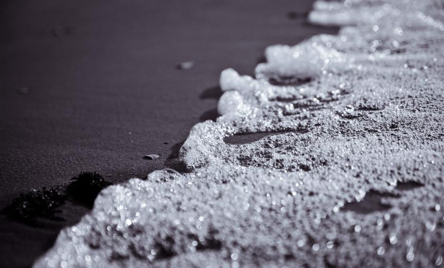 Algae Rømø Beach Strand Sea Meer Macro Makro