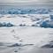 Tracks RV Polarstern Fram Strait Polar Bear Eisbär Arctic Arktis Ice Eis